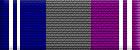 Departmental Service Badge: Support